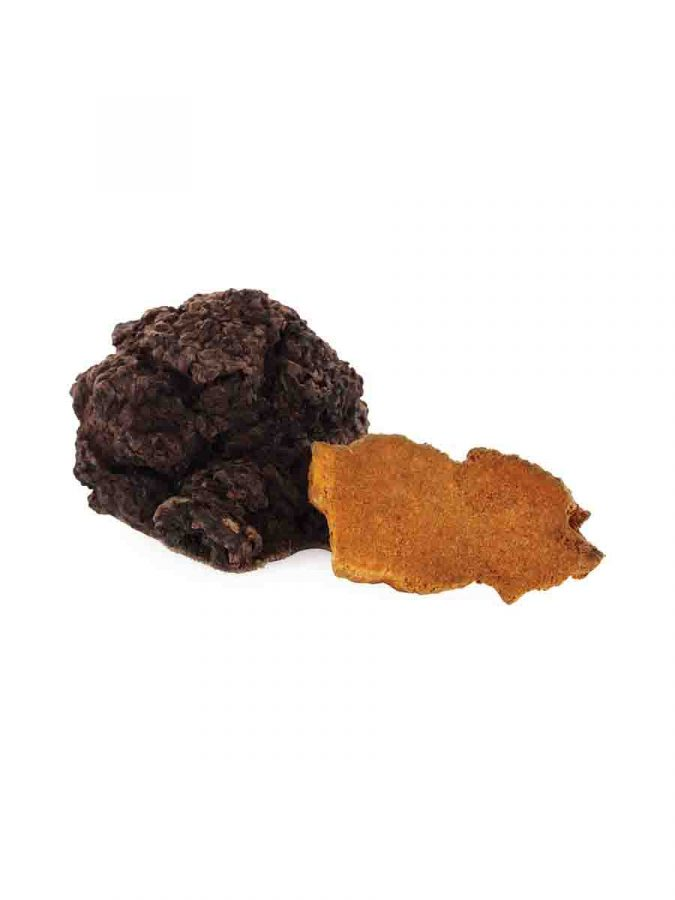 Hawlik Chaga Extrakt in Kapselform Kapseln