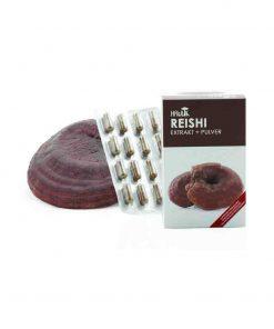 Reishi Extrakt + Pulver in Kapselform 120 Kapseln