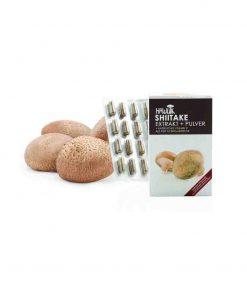 Shiitake Extrakt + Pulver in Kapselform 120 Kapseln