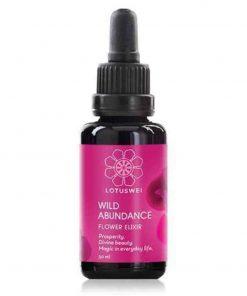Wild Abundance Elixir Blütenessenz 30ml